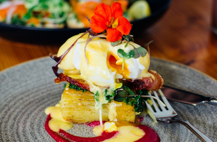 where to eat auckland, the commons menu auckland, the garden shed menu auckland, wise cicada menu auckland, matakana market kitchen menu auckland, geeks on sainsbury menu auckland, best places to eat in Auckland, the best cafes in Auckland, the best resta