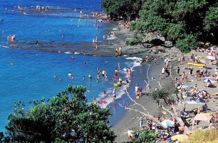 best camping spots auckland
