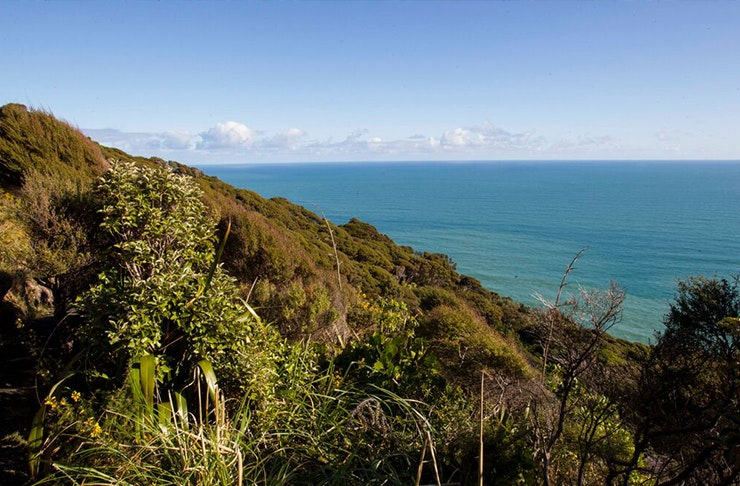 50 Things To Do In Auckland This Winter