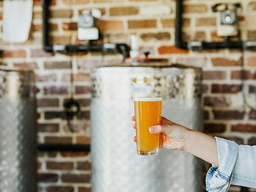 sunshine-coast-beer-tours