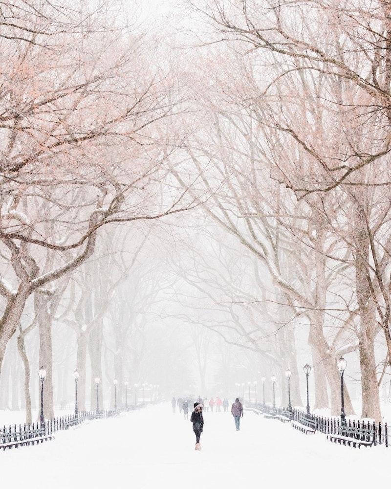 Best Walks NYC
