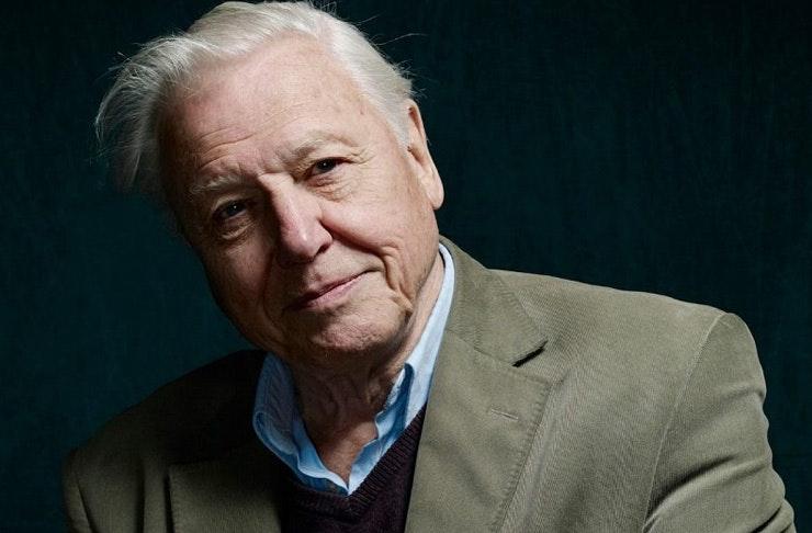 David Attenborough Coming To Perth