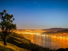 Gather Your Squad, Here's 7 Epic Things To Do In Dunedin After Dark