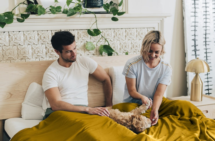 A man and woman are lying in bed with their dog