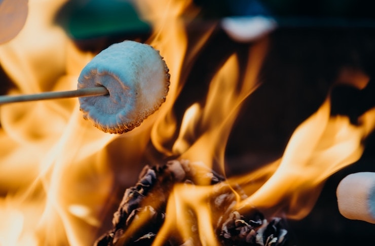 A marshmallow being roasted on a stick over flames