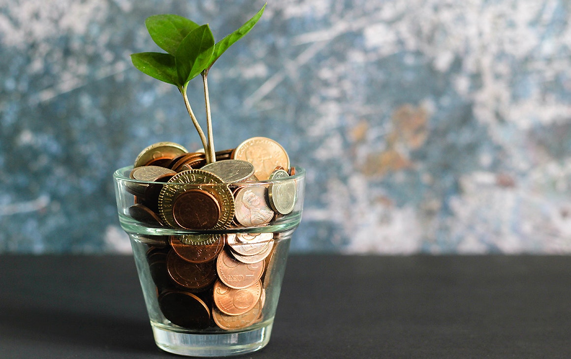 A full penny jar with a shoot of life growing from the top
