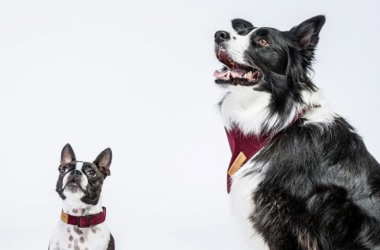 hunter-and-hound-melbourne