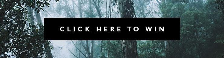 best outdoor adventures tasmania