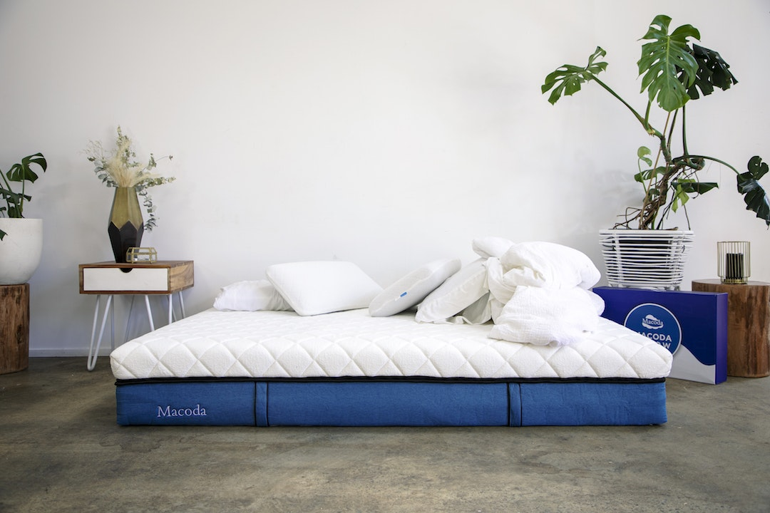 A huge mattress sits on a concrete floor next to a lush pot plant.