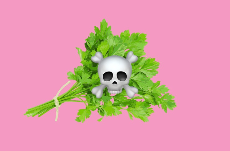 things only parsley haters understand