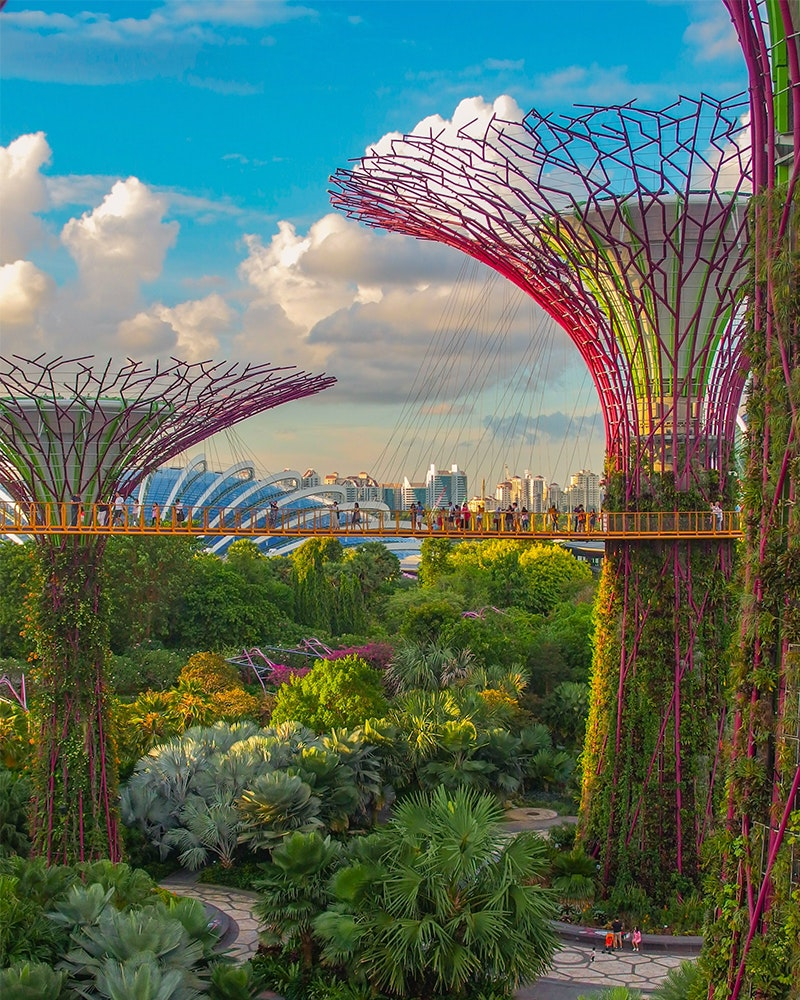 Solo Travel Singapore Gardens by the Bay