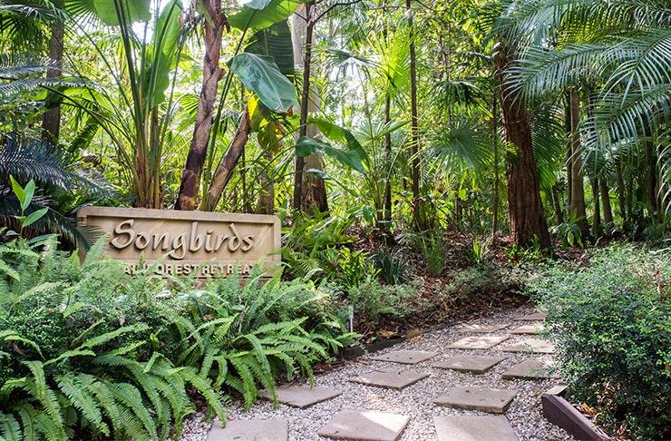 Songbirds Rainforest Retreat Mount Tamborine Accommodation