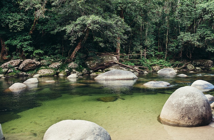 Clear creek fringed by rainforest, with granite boulders in the water