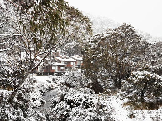 The Cedar Cabins at The Eastern accommodation in Thredbo.