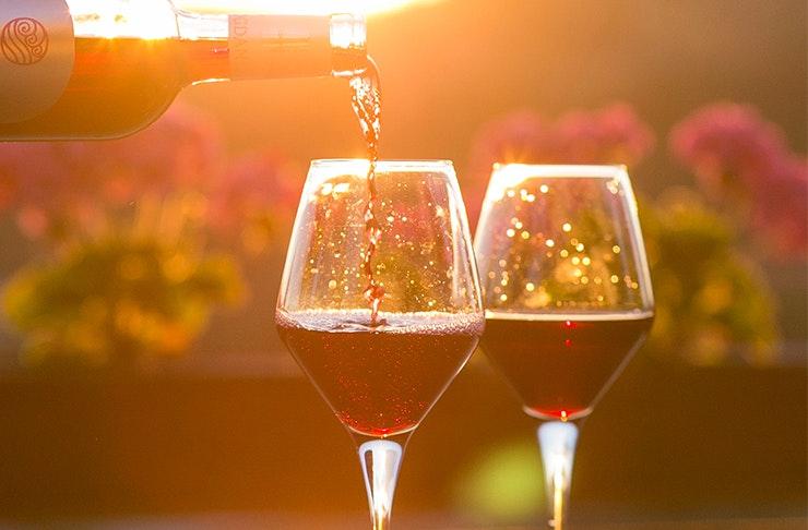 wine yoga retreat sydney