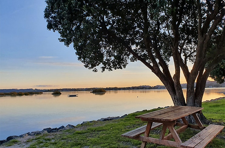 Whangateau Holiday Park, best camping in Auckland