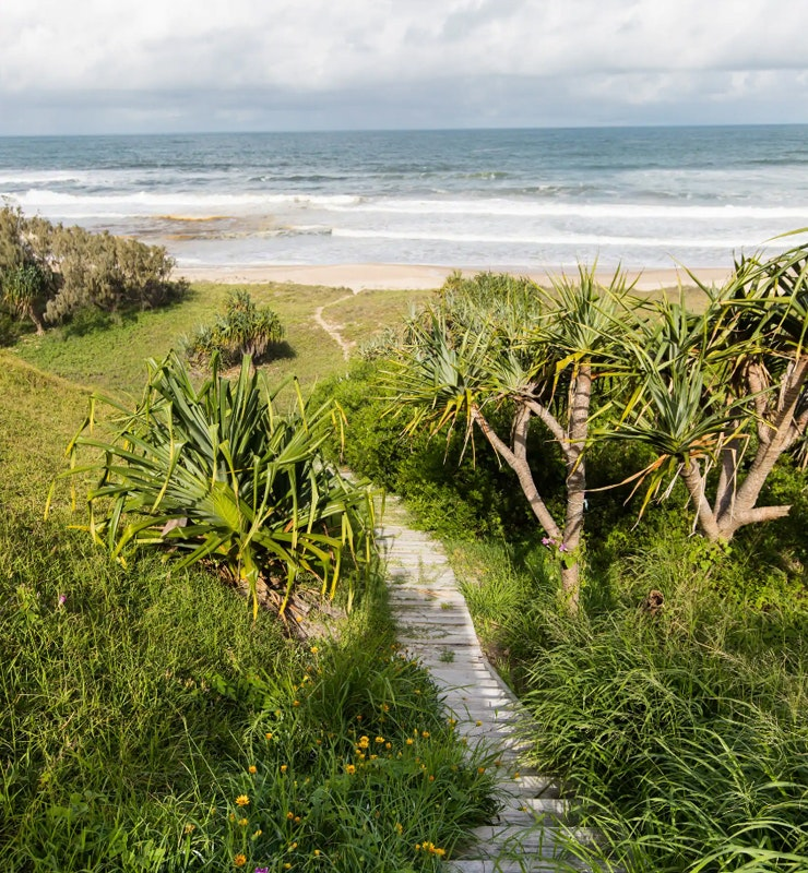 A beach track runs down a dune at Sunrise Beach in Noosa.