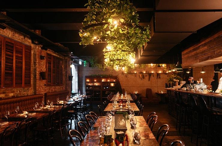 best restaurants brisbane