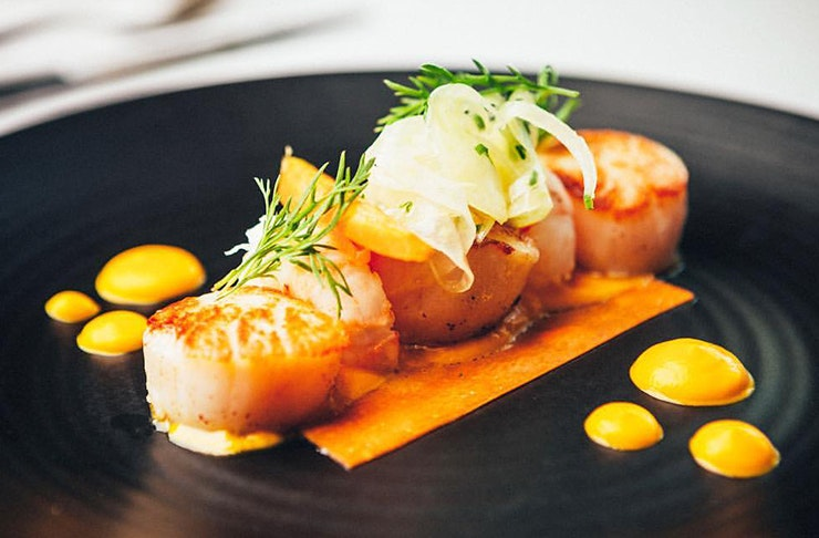 Auckland's Best Seafood Restaurants