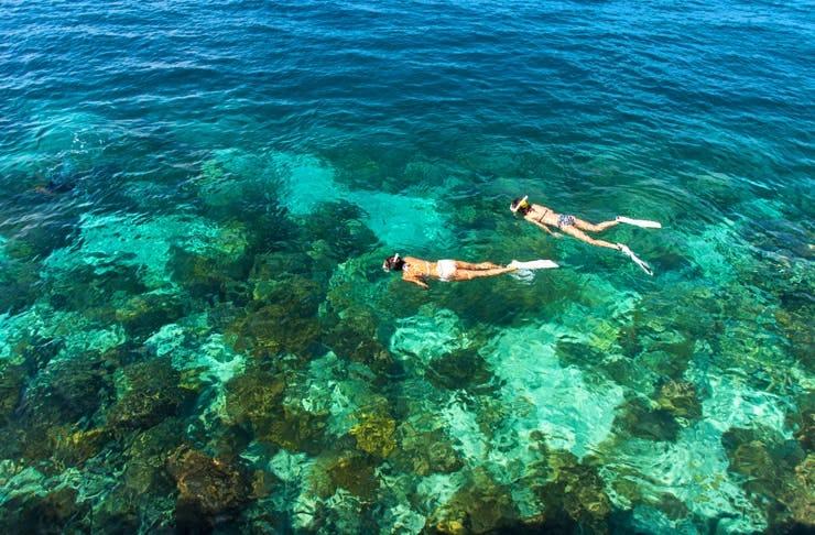 best snorkelling sunshine coast