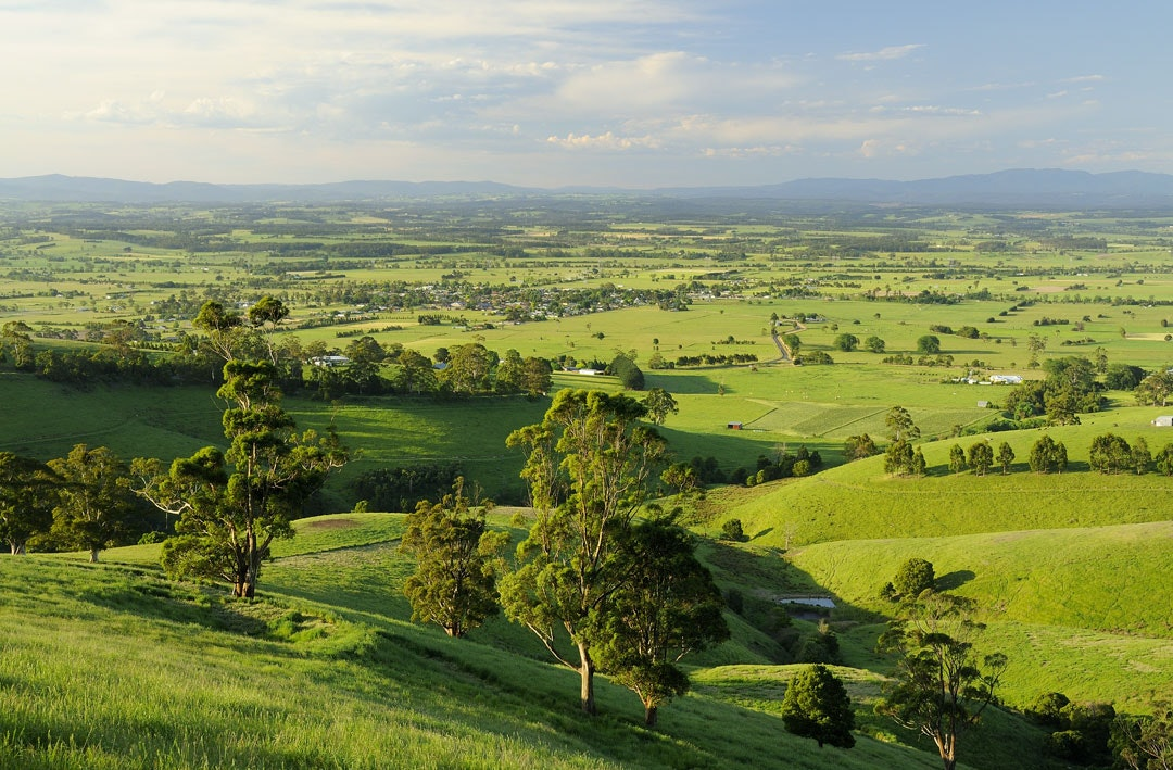 Rolling green hills of the landscape surrounding Jindivick in West Gippsland, Victoria.