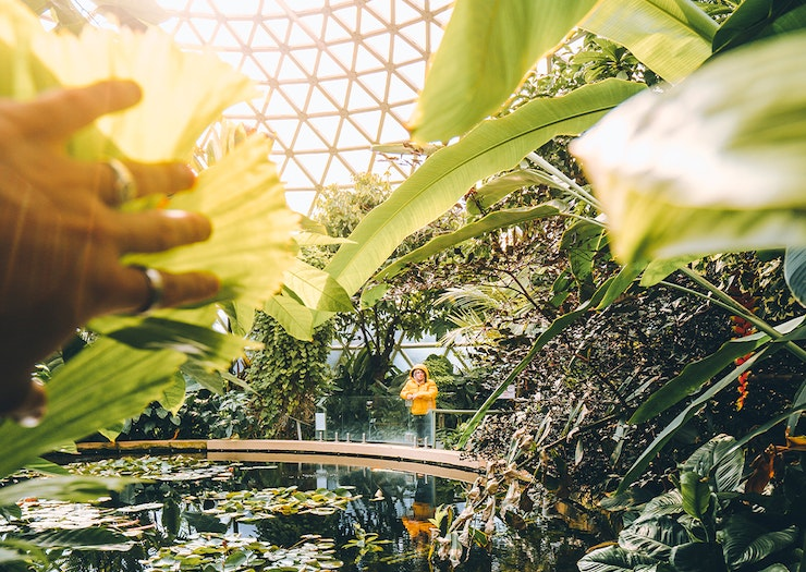Bask In The Outdoors At 7 Of The Most Insta-Worthy Gardens In Brisbane