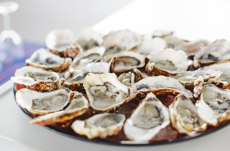 east 33 oyster delivery sydney