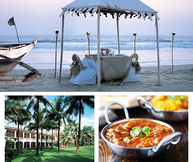 Best things to do in goa