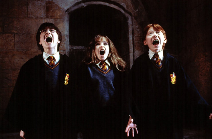 Harry Potter marathon, potterfest brisbane