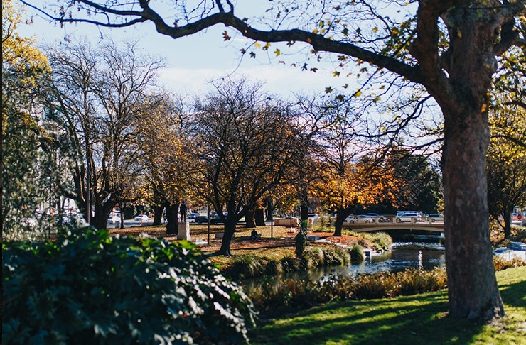 Things To Do Christchurch