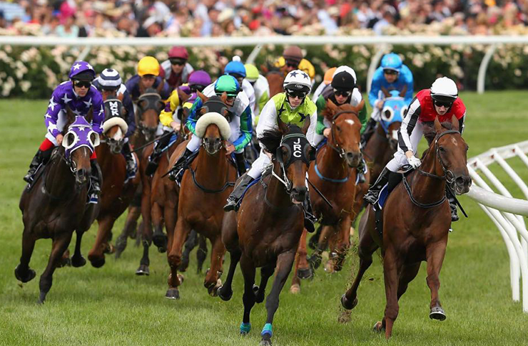 Melbourne Cup 2016 Betting Guide