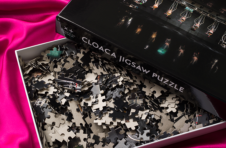 MONA's cloaca puzzle laid out on a pink velvet cloth.
