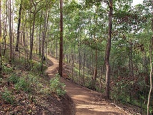 Start Warming Up, A New Track To The Mt Coot-tha Summit Just Opened