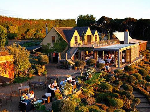mudbrick vineyard, waiheke vineyards, best winery auckland, waiheke island