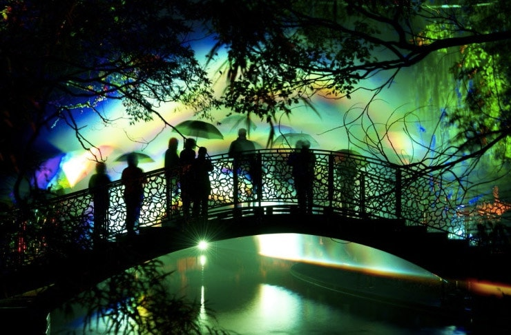 Don't Miss This Epic Light Festival!