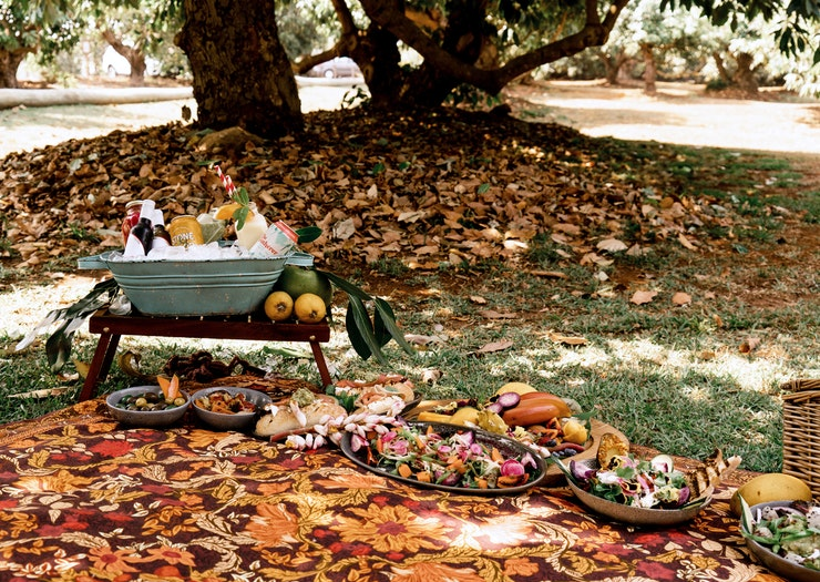 Step Up Your Picnic Game At This Avocado Orchard And Cactus Garden