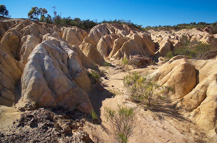 The sprawling pink clay cliffs surrounded by gumtrees in Heathcote.