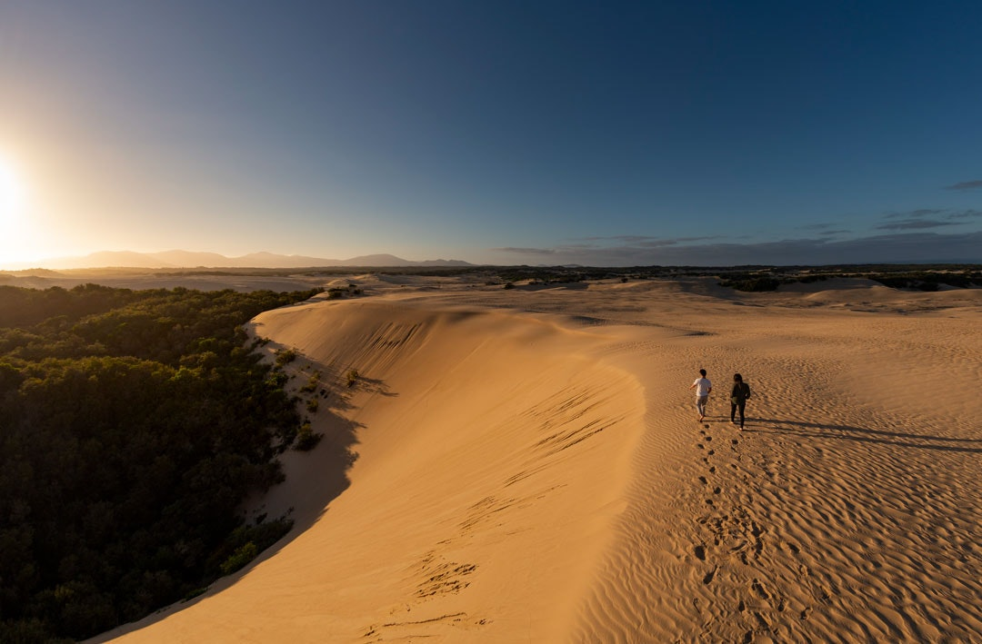 Two people standing on sand dunes above Wilsons Promontory National Park looking out over the southern ocean.