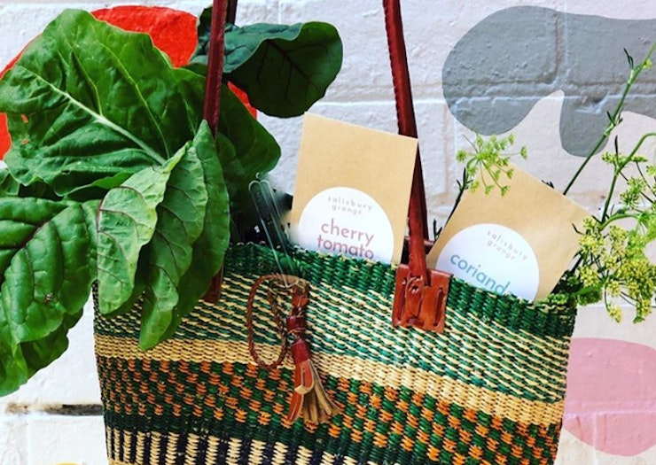 Get These Super-Cute Seed Packs Delivered And Grow Your Own Food At Home