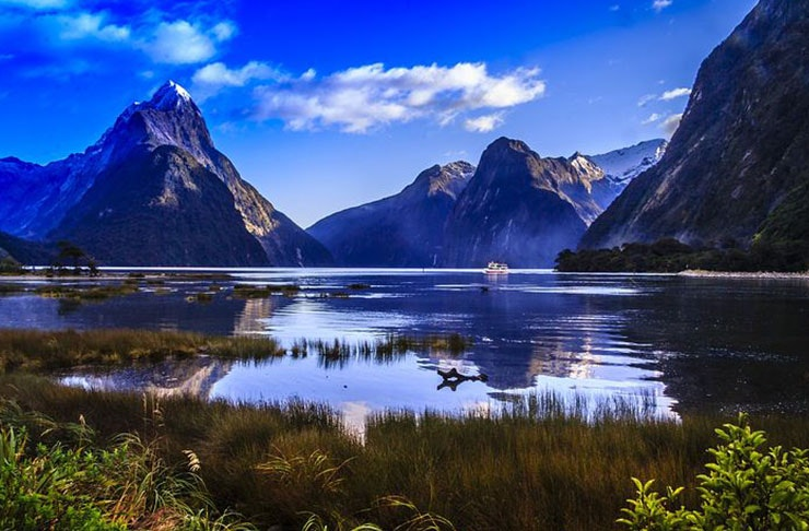 30 Things To Do In The South Island This Summer