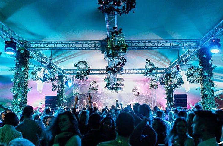 Here Are The Best Things To Do In Auckland This November