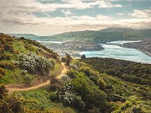 12 of Wellington's Best Running Tracks To Help You Level Up Your Exercise Regime