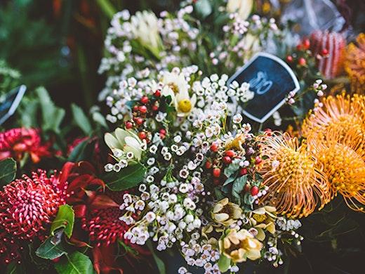 Tugun fruit and flowers