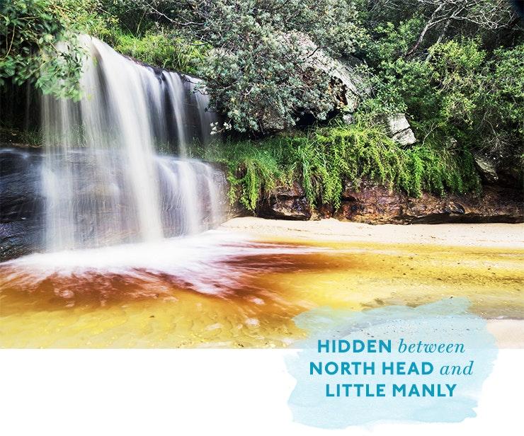 waterfalls-sydney-swimming