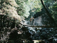 Soak Up Some Nature On 10 Of The Most Breathtaking Bushwalks Just 1 Hour From Sydney
