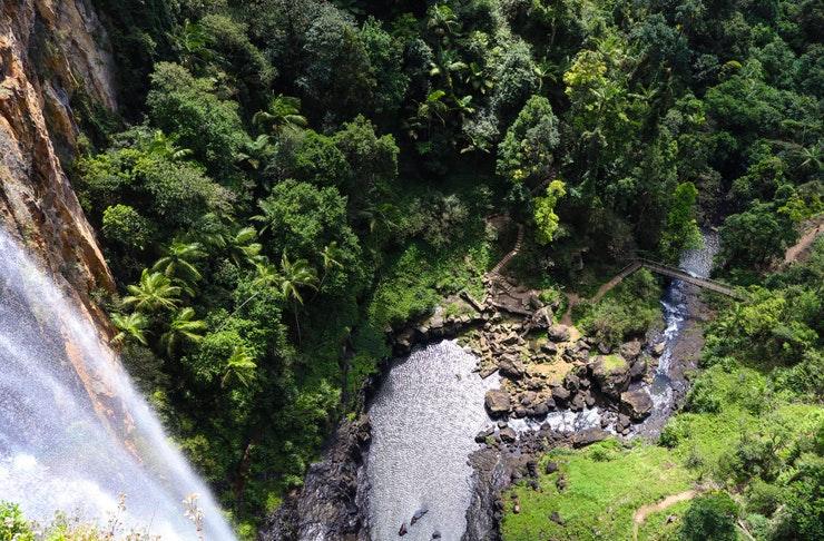 overlook view of springbrook waterfall