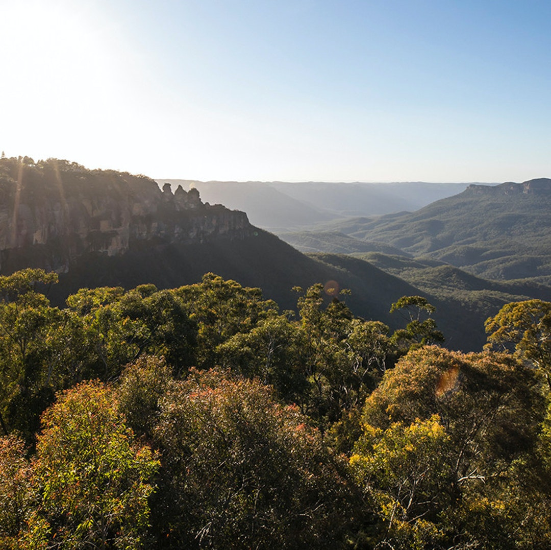 blue mountains national park, a panoramic view of the valley