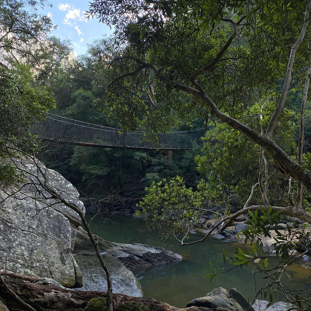 suspension bridge and creek in brisbane water national park