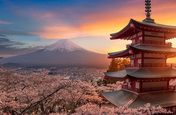 a stunning sunset scene over mt fuji. the forefront is a traditional temple and clusters of pink cherry blossom trees.