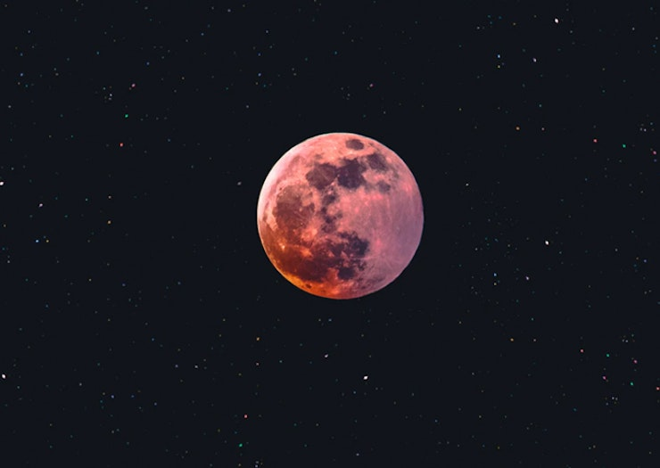 Get Set To Plan Around The Celestials, Here's Everything To Know About Moon Gardening